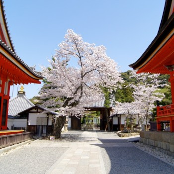 Kiyomizu-dera_11-00-28