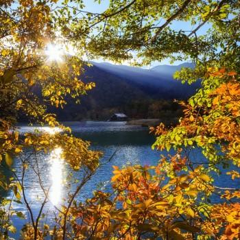 japan-nikko-tochigi-mountain-lake-tree-sun-rays