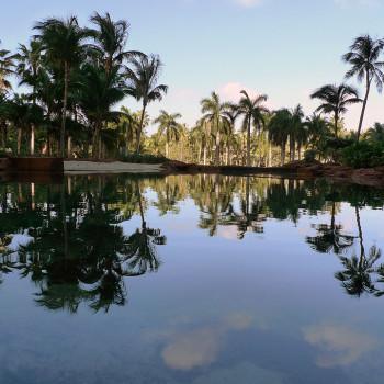 Upper_Lagoon_Atlantis_Paradise_Island_photo_D_Ramey_Logan