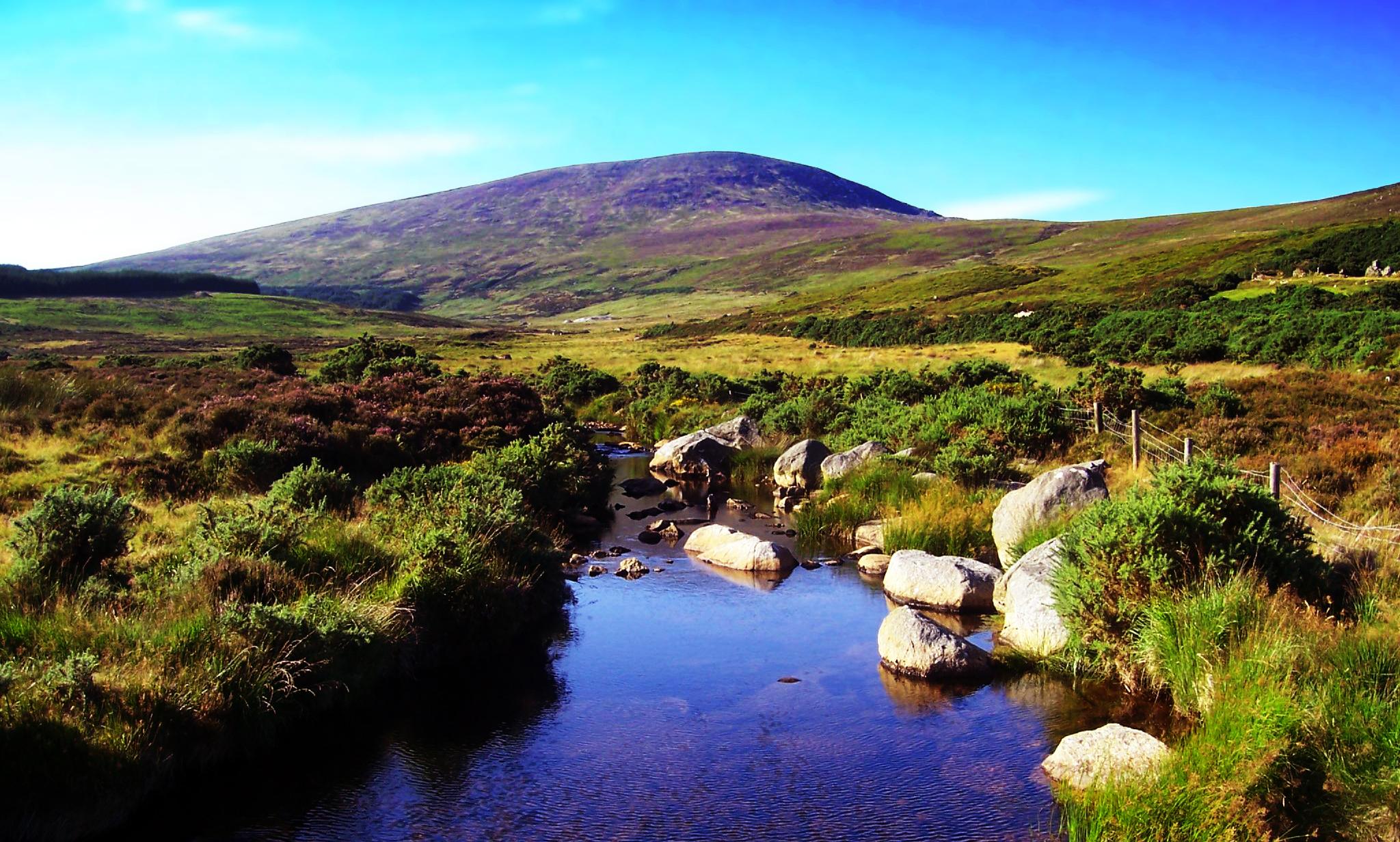 Landscape_in_Wicklow,_Ireland