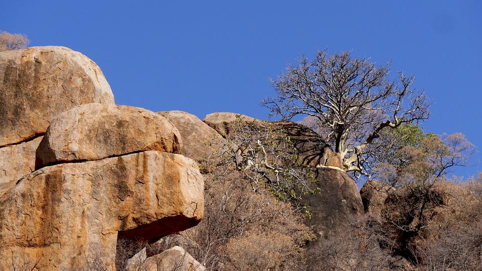 botswana-926896_960_720